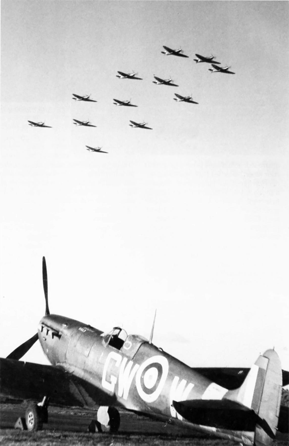 Spitfire MkVb RAF 340Sqn GWW Marcel Albert AR363 England June 1942 01