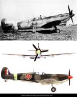 Asisbiz Spitfire MkIX RAF 352Sqn MK444 Yugoslavia Mar 1945 02