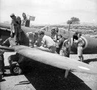 Asisbiz Spitfire MkVcTrop RAF 601Sqn Dennis Barnham Luqa Malta June 1942 IWM 1004