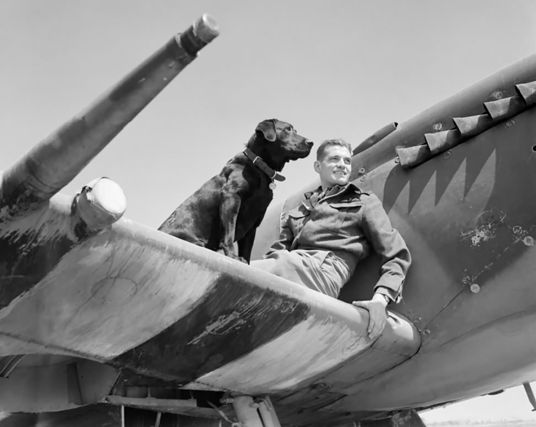 Aircrew RAF Ace JE Johnnie Johnson in his Spitfire MkIX RAF 144 (Canadian) Wing Bazenville Normandy 01