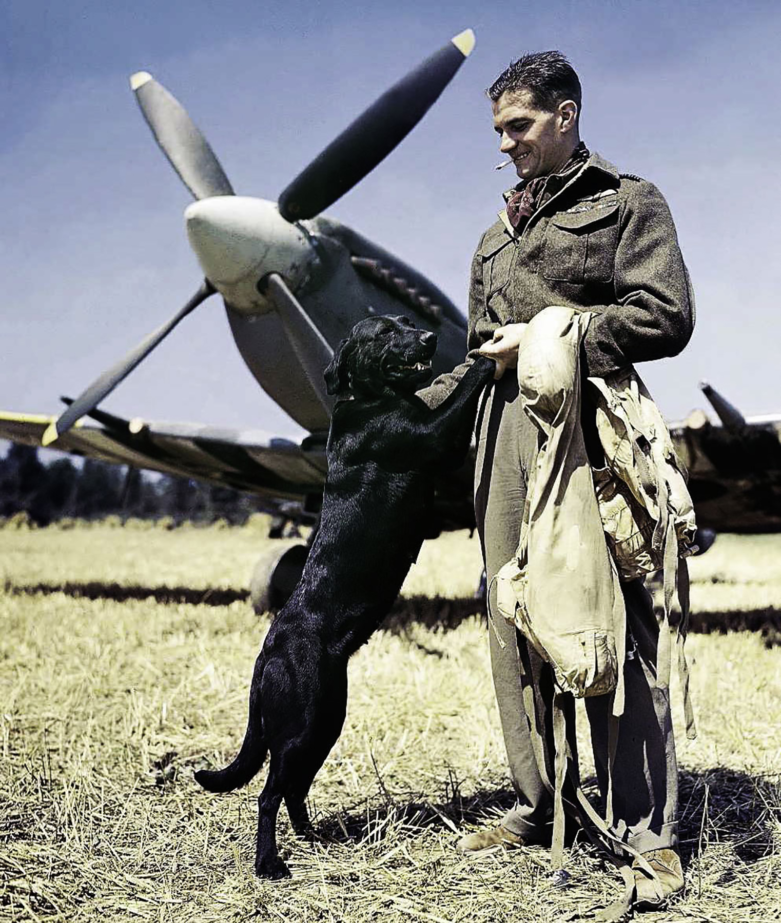 Aircrew RAF Ace Wg Cdr JE Johnnie Johnson DSO DFC with Labrador Sally at Bazenville Normandy July 1944 01