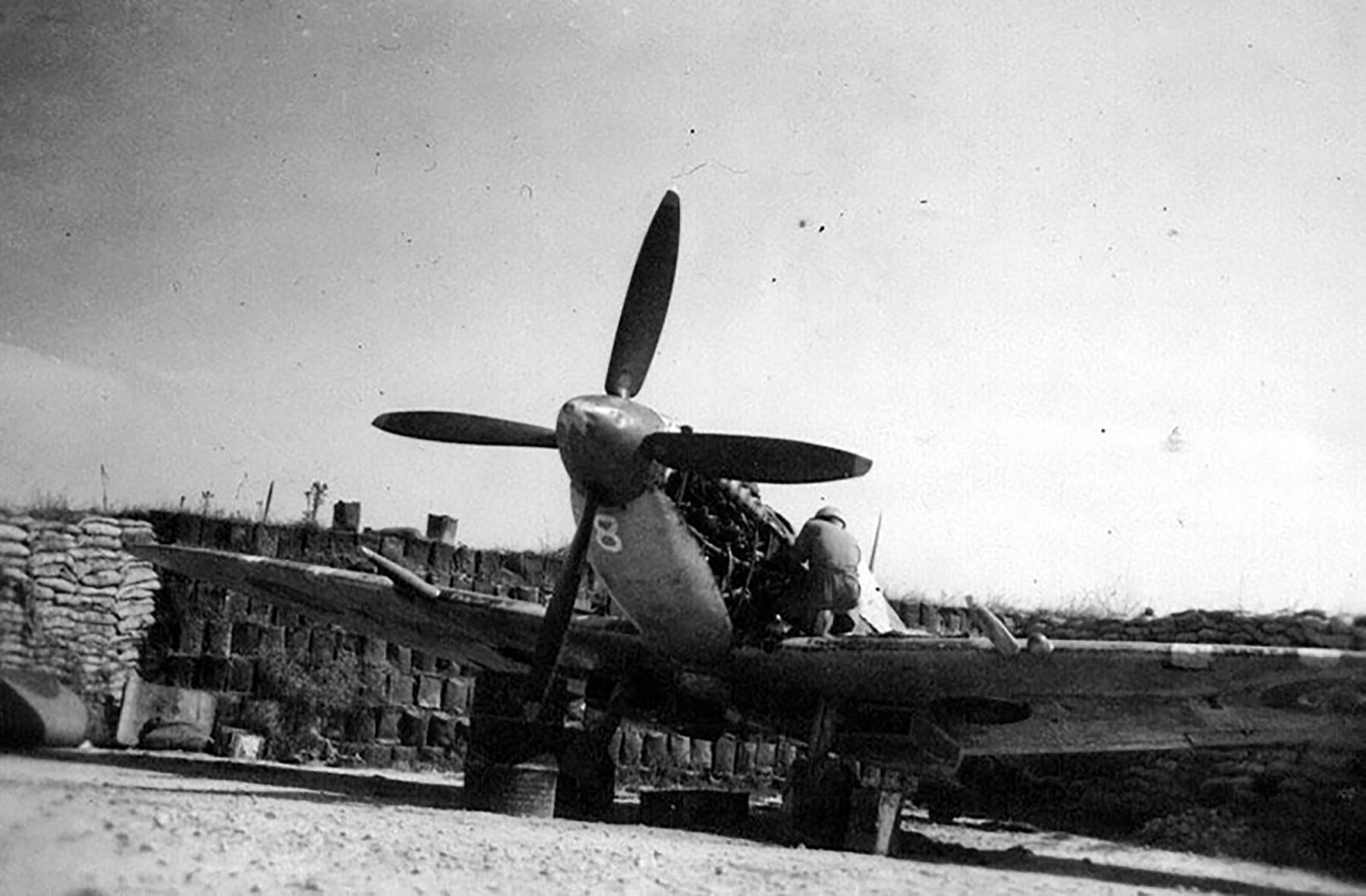Spitfire MkIX SAAF 1Sqn AX8 Robbie Robinson EN286 Luqa Malta Jun 1943 03