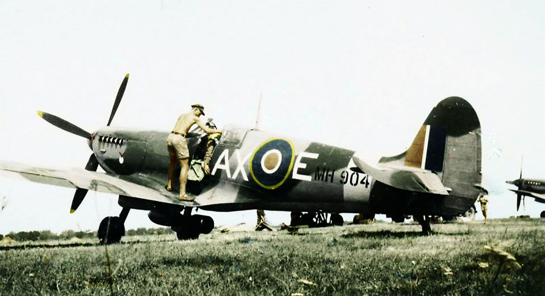 Spitfire MkIX SAAF 1Sqn AXE MH904 Italy 1943 01