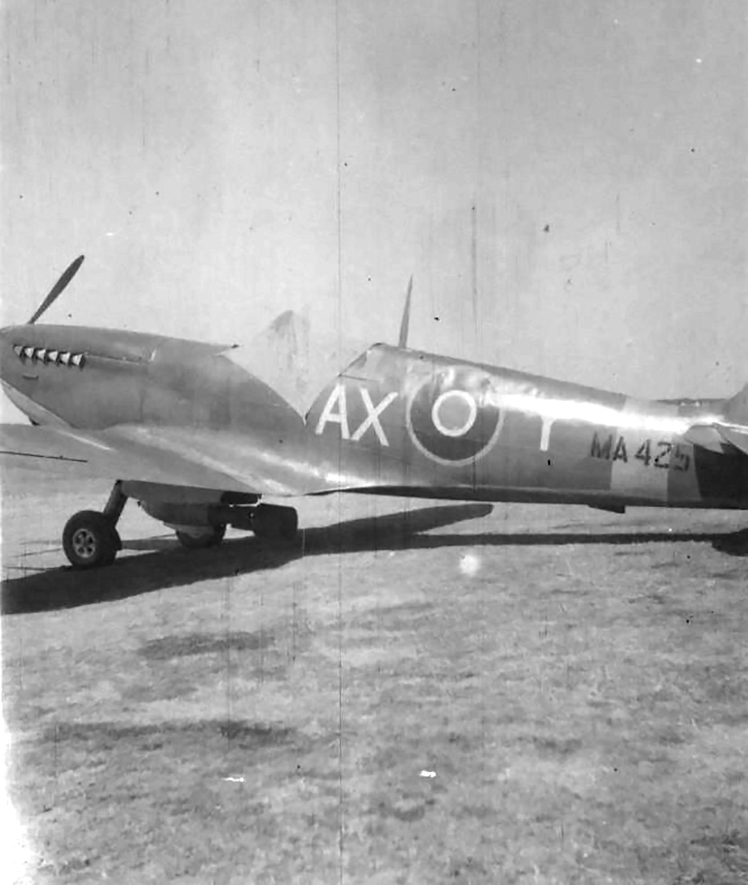 Spitfire MkIX SAAF 1Sqn AXY MA423 Italy 1943 05
