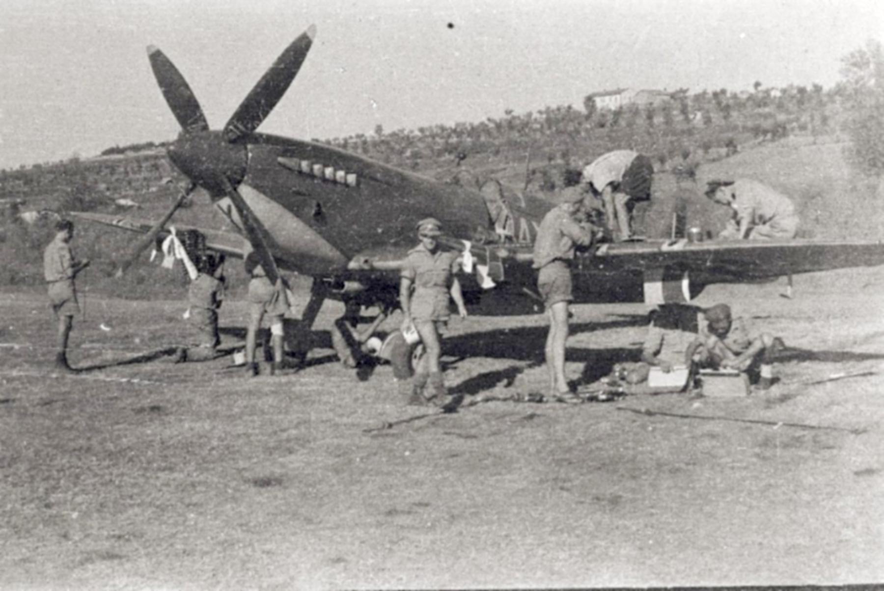 Spitfire MkIX SAAF 1Sqn AXZ Italy 1943 01