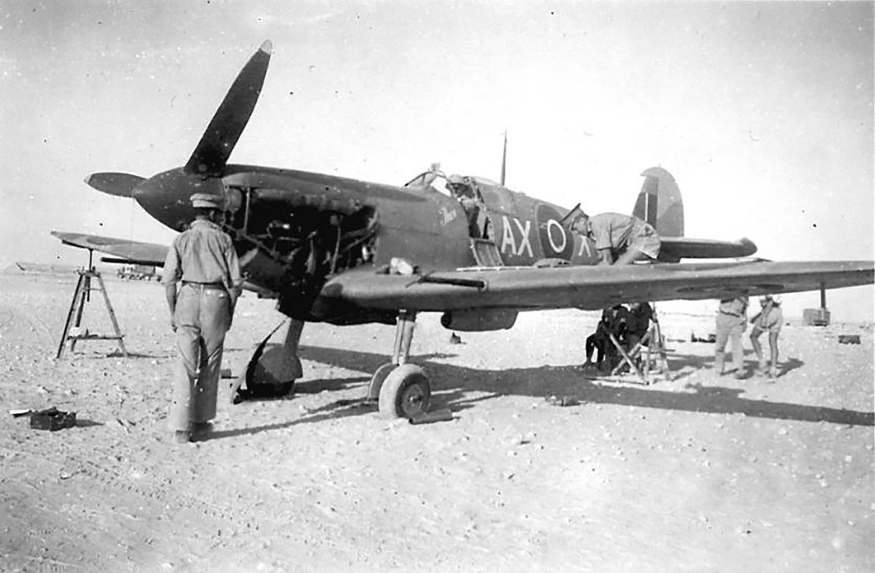Spitfire MkVb SAAF 1Sqn AXX Italy 1943 01