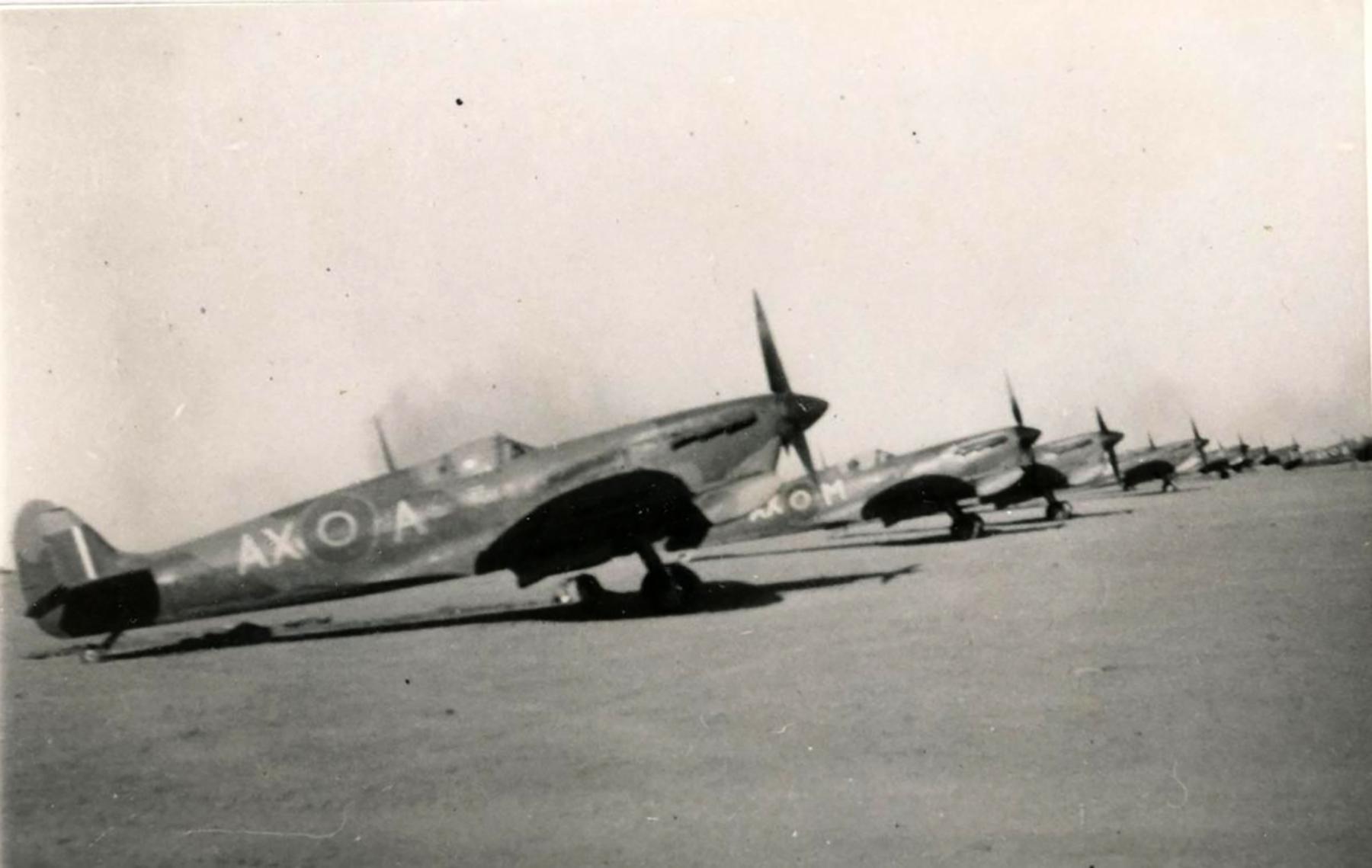 Spitfire MkVbTrop SAAF 1Sqn AXA 1942 01