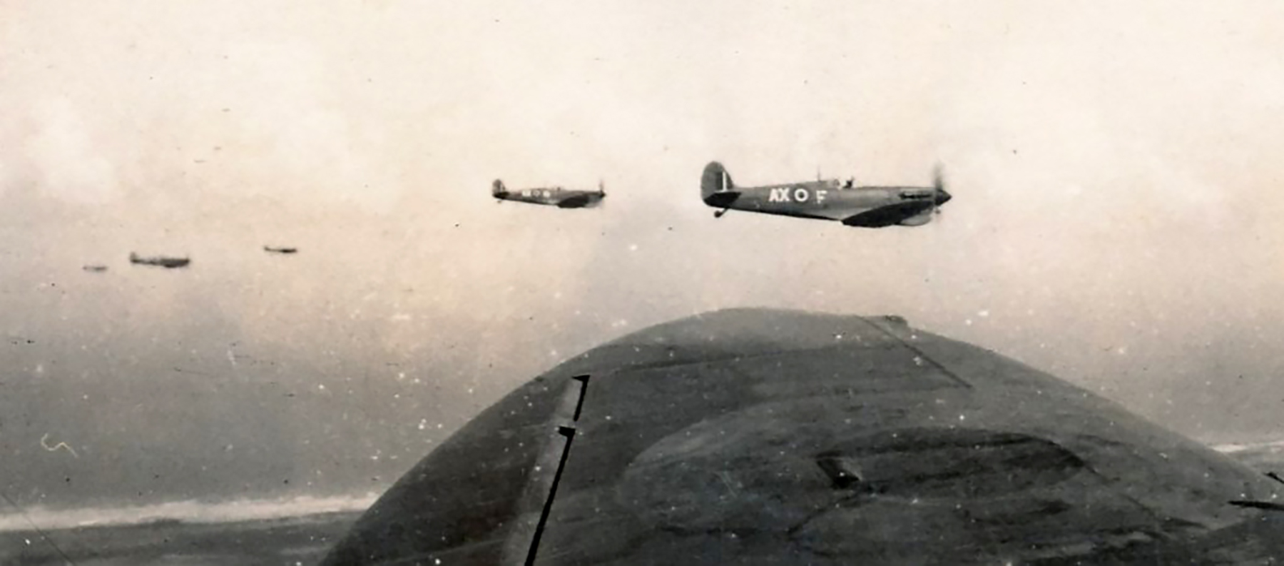 Spitfire MkVbTrop SAAF 1Sqn AXF 1943 01