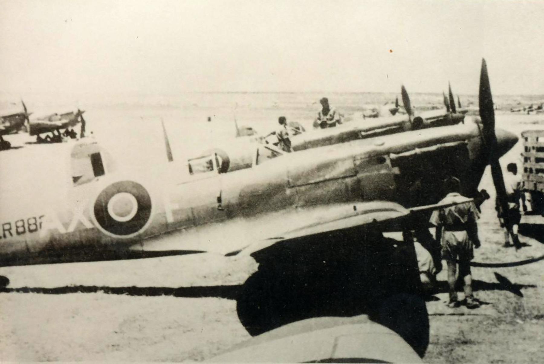 Spitfire MkVbTrop SAAF 1Sqn AXF ER882 Italy 1943 01