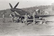 Asisbiz Spitfire MkIX SAAF 1Sqn AXZ Italy 1943 01