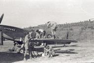 Asisbiz Spitfire MkIX SAAF 1Sqn AXZ Italy 1943 02