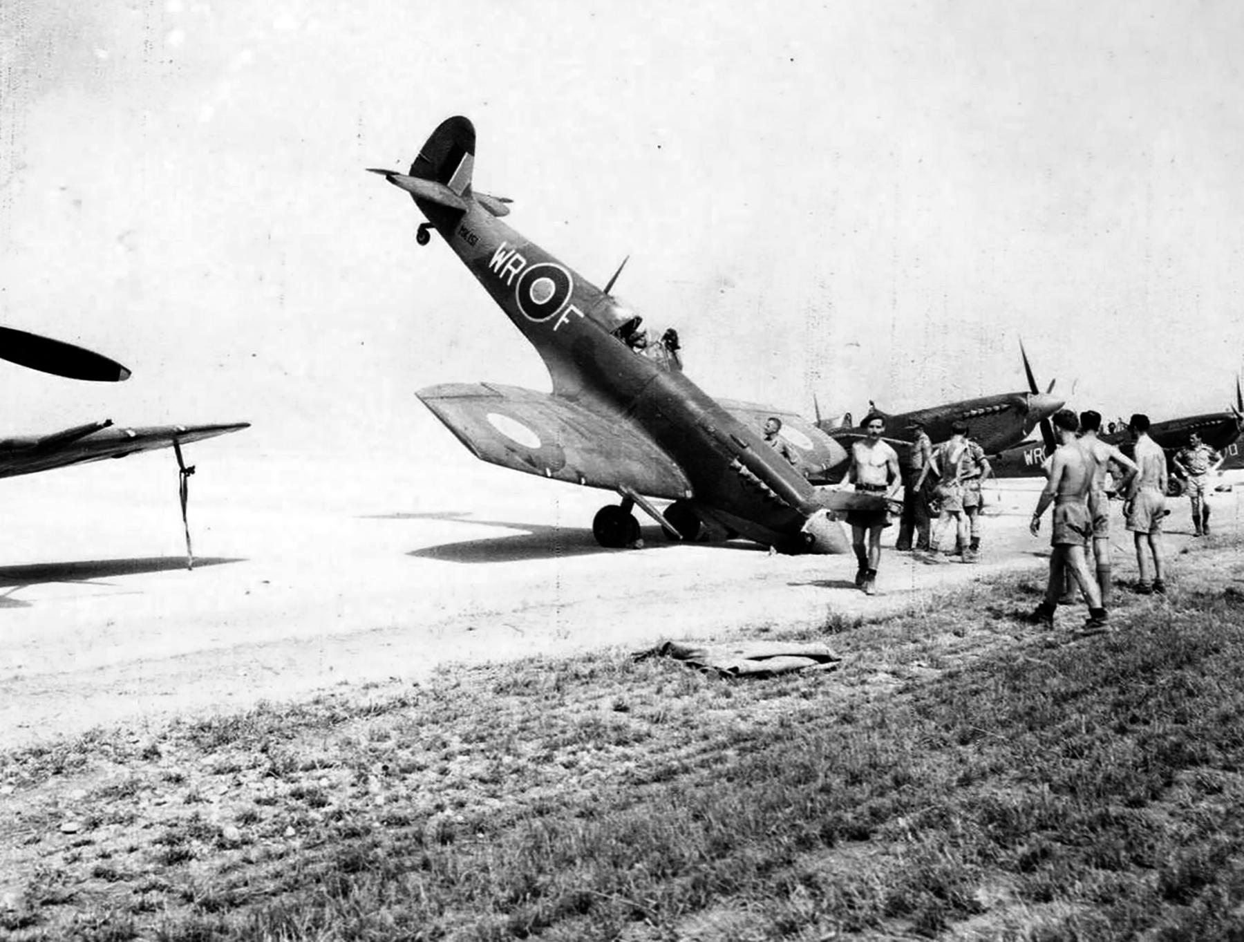 Spitfire LFIXc SAAF 40Sqn MK151 Italy 1943 02