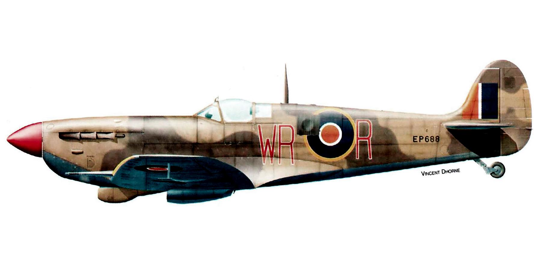 Spitfire LFVb SAAF 40Sqn WRR Aboukir filter F24 camera EP688 Sicily 1943 0A