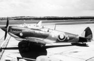 Asisbiz Spitfire LFIX SAAF 40Sqn WR RR LtCol Bob Rogers PT672 Italy 1943 02