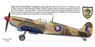 Asisbiz Spitfire LFVb SAAF 40Sqn WRR Aboukir filter F24 camera EP688 Sicily 1943 0B