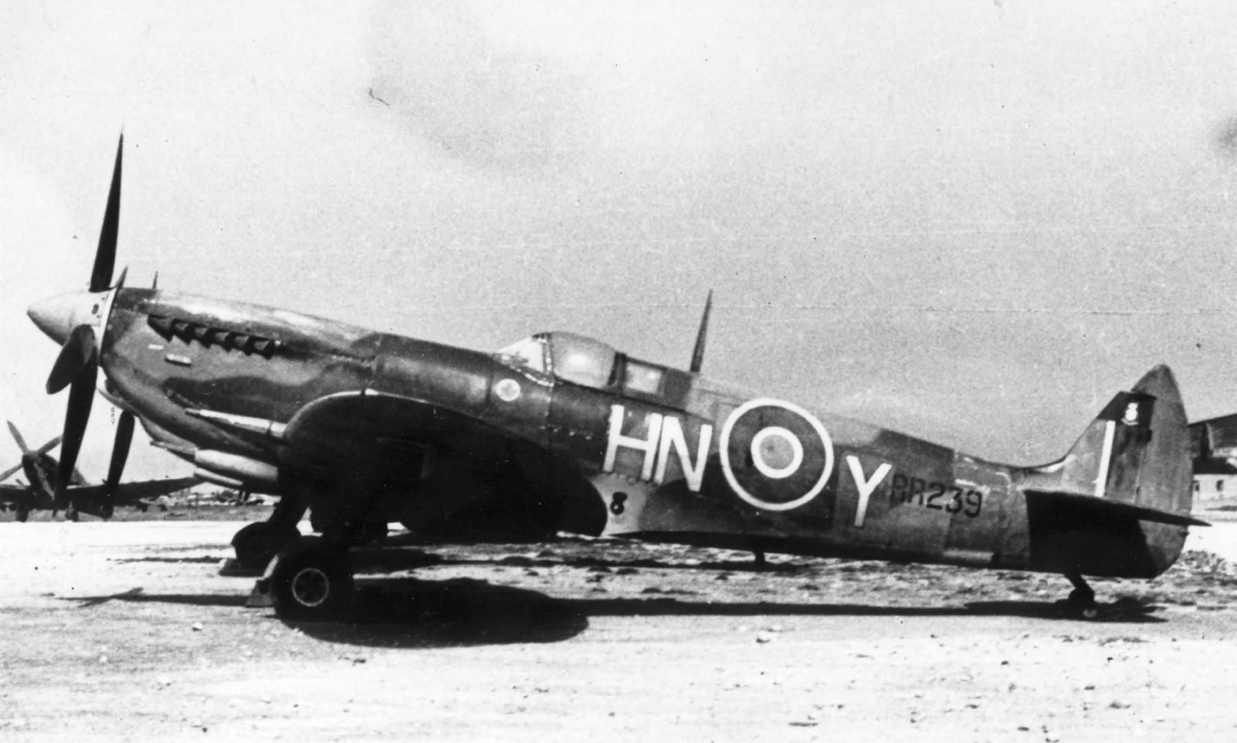 Spitfire HFIX RAF 93Sqn HNY RR239 web 01