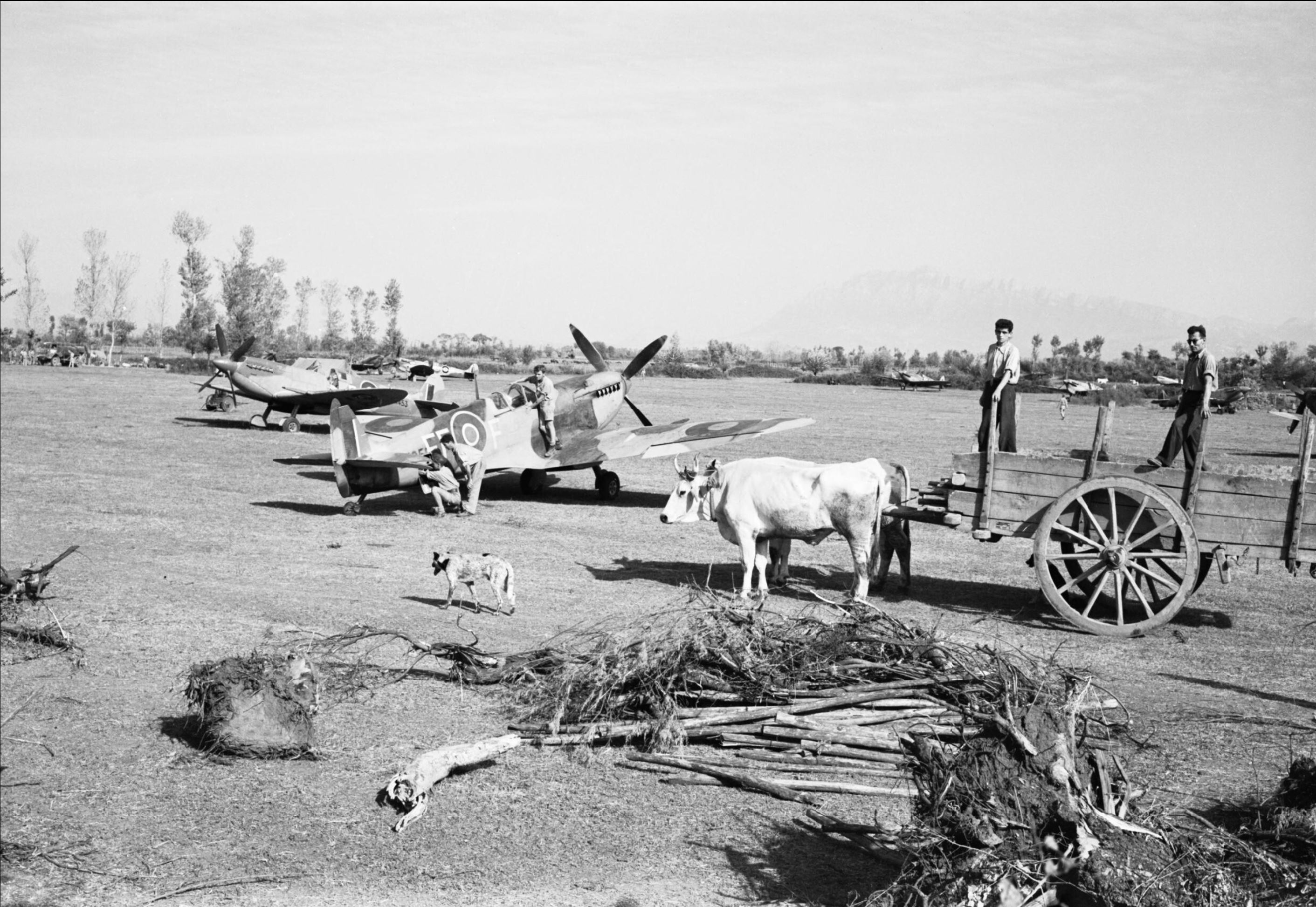 Spitfire MkIX RAF 232Sqn EFF at Serretelle nr Salerno Italy 3 Oct 1943 IWM CNA1642