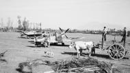 Asisbiz Spitfire MkIX RAF 232Sqn EFF at Serretelle nr Salerno Italy 3 Oct 1943 IWM CNA1642a