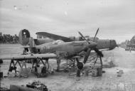 Asisbiz Spitfire MkVIII RAF 136Sqn HMU at Cocos Islands IWM CF687