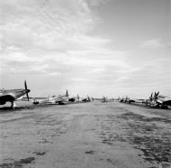 Asisbiz Spitfire MkVTrop RAF reinforcement aircraft at Bone Algeria IWM CNA3984