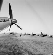Asisbiz Spitfire MkVTrop RAF reinforcement aircraft at Bone Algeria IWM CNA46