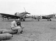 Asisbiz Spitfire V and IX in Southern France 1944 web 01