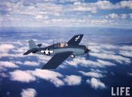 Asisbiz Grumman F4F 3 Wildcat showing the 3 tone paint scheme color photo by Time Life 05