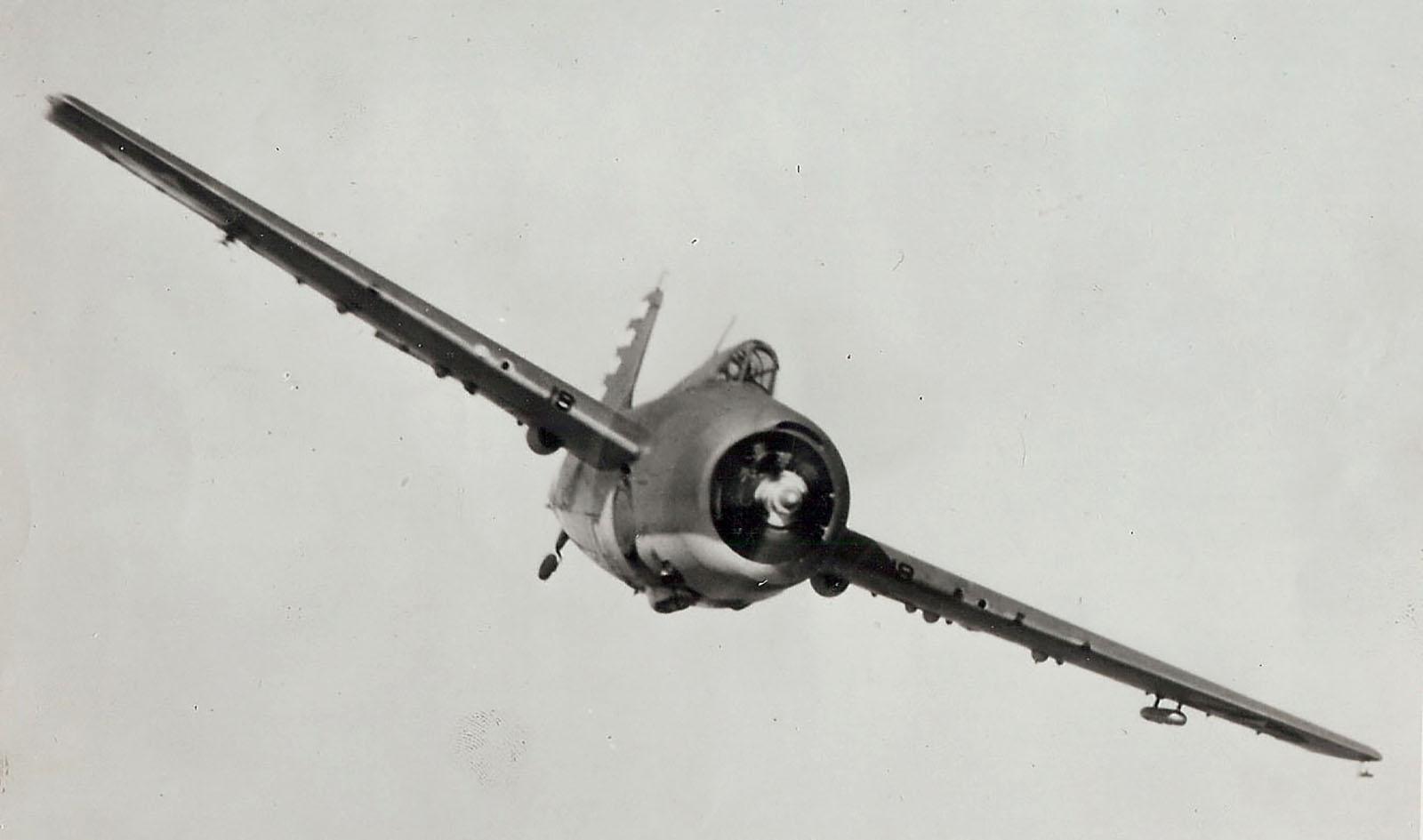 Grumman F4F 3 Wildcat Black 18 head on 01