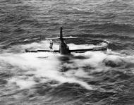Asisbiz Aircrew USMC pilot makes a quick exit after ditching his sinking Wildcat 01