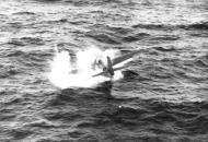 Asisbiz FM 2 Wildcat VC 68 White 08 ditched Ed White Van Hise Jr 1945 02