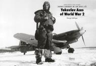 Asisbiz Aircrew Soviet 21IAP KBF Baltic Fleet Yak 9 pilot Lt Nikolai D Serykh in winter flying gear 1945 01