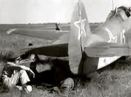 Asisbiz Yakovlev Yak 9D 802IAP 310IAD White 15 Poltava Kharkiv air defense 1944 02