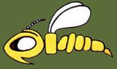 Zerstörergeschwader 1 emblem