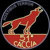 20° Gruppo C.T. 352a Squadriglia