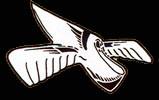 3.JG21 Emblem