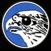 Jagdgeschwader 51 Emblem