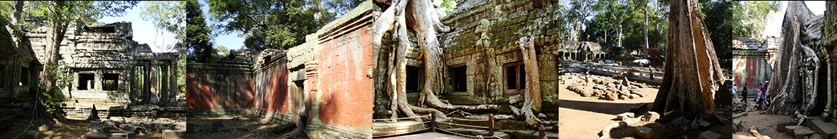 Header Ta Prohm Temple