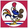 emblem USAAF 67th FS