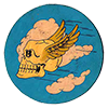 USAAF 85th Fighter Squadron