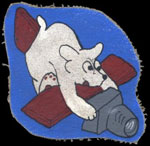 USAAF 14th Photographic Squadron patch
