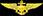 naval air wings badge